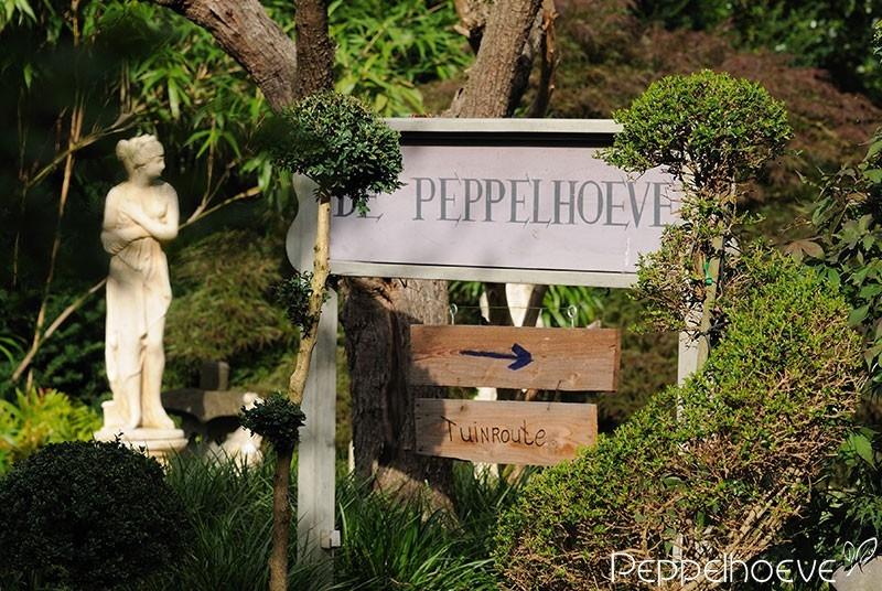 Tuincentrum Peppelhoeve