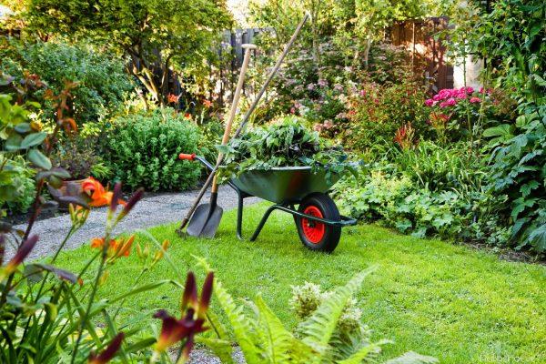 tuinonderhoud bij Peppelhoeve