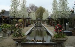 peppelhoeve tuincentrum